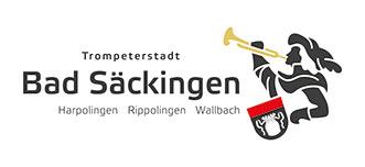 BS-Logo-qco_klein